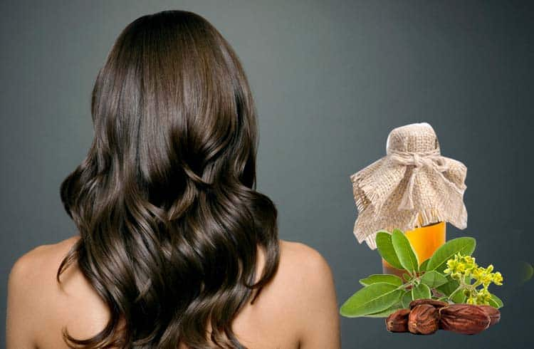 10 Best Jojoba Oil For Hair 2019 (Perfect Results and More Effective)