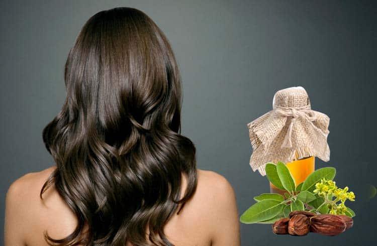 jojoba oil for hair