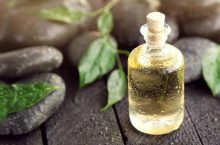 5 Best Tea Tree Oils 2019 (the Most Effective without Harm)